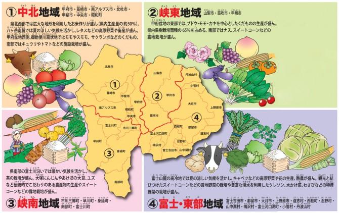 山梨県地域農産物詳細
